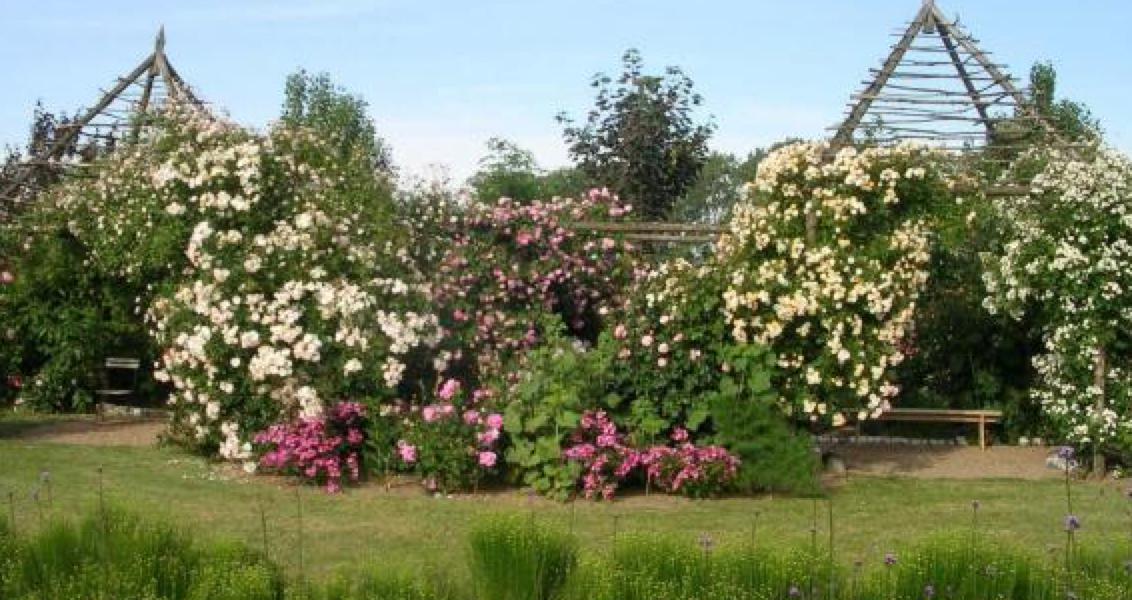Les jardins de roquelins