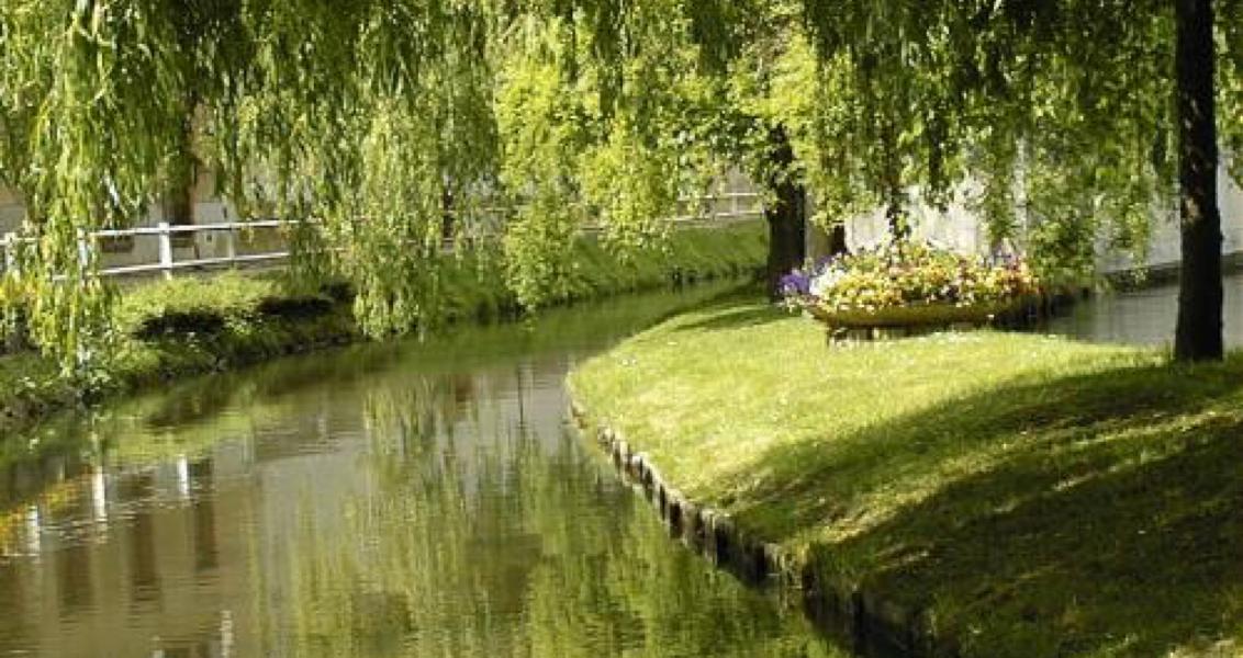 Les Mauves l'affluent de la Loire